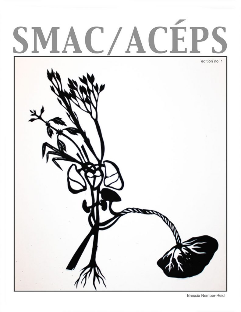 Student Midwives Association of Canada publishes first zine